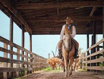 © Texas Tourism