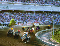 Chuckwagon Race vor großer Arena.  © Calgary Stampede